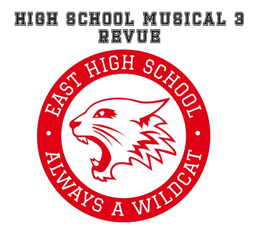 Hsm3 Logo No Name